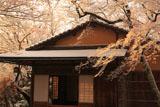 京都神光院 雪の花と蓮月庵