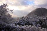 光悦寺 雪化粧の鷹ヶ峯