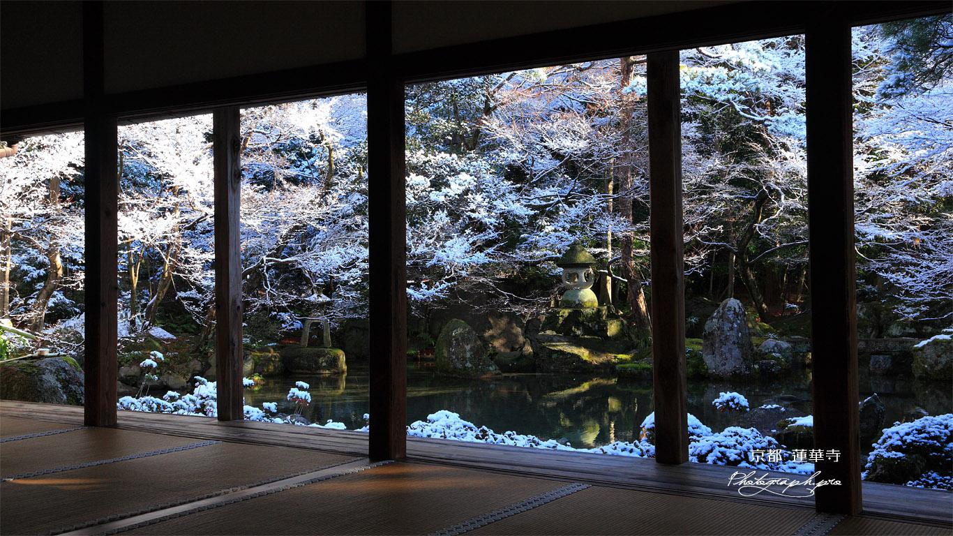 蓮華寺 書院から雪化粧の庭園 壁紙