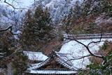 京都金蔵寺 雪化粧の客殿
