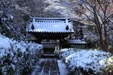 泉涌寺来迎院 雪化粧の山門