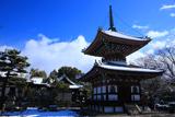 本法寺 雪化粧の多宝塔