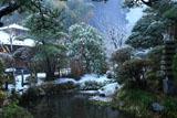 鎌倉光触寺 雪の池泉庭園