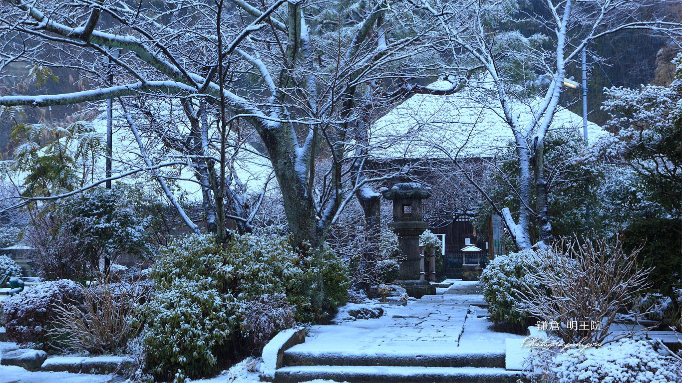 明王院 雪化粧の参道 壁紙