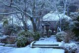 明王院 雪化粧の参道
