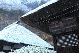 明王院 雪と奉納額