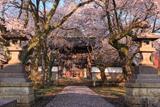 芳賀町 崇真寺再訪