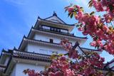 鶴ヶ城 八重桜と天守閣