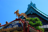鎌倉九品寺 神輿と本堂