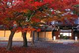 本願寺西山別院 紅葉と山門