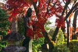 長法寺 観音菩薩と紅葉
