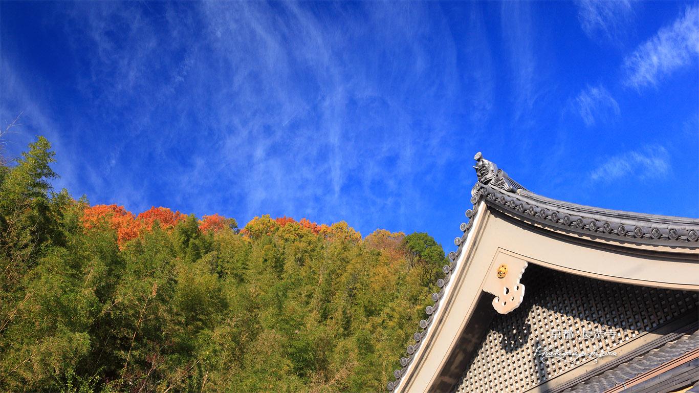 長法寺 本堂と秋空 壁紙