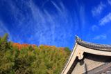 長法寺 本堂と秋空