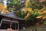 京都小倉神社 拝殿と紅葉