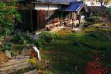 京都福成寺 苔庭と本堂