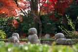 智勝院 童像と紅葉
