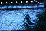日向大神宮 淡雪の内宮本殿