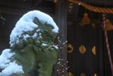 甘縄神明神社 冠雪した狛犬