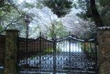 雪化粧の鎌倉文学館