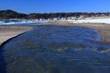 由比ヶ浜 滑川の雪解け水
