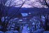 宗忠神社 淡雪の参道からの真如堂