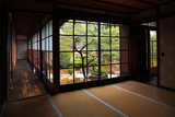 三時知恩寺 書院から梅咲く蓬莱の庭