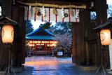 白峯神宮 神門越しのナデシコ桜
