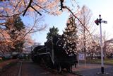 塩尻市役所のD51形蒸気機関車
