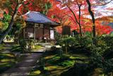 清閑寺 紅葉と本堂