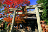 鳥辺山妙見堂 紅葉と妙見堂