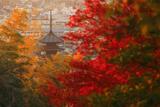 霊山正法寺 紅葉越しの八坂の塔