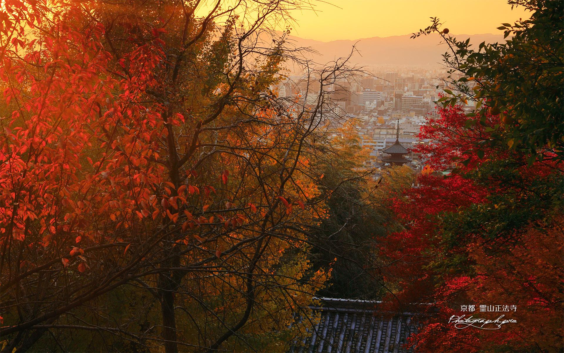 霊山正法寺 紅葉越しの山門と京都市街