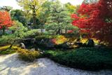 正伝永源院 紅葉の庭園