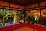 建仁寺霊源院 甘露庭の紅葉ライトアップ