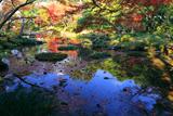 無鄰菴 紅葉の疏水庭園
