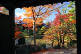 牧護庵 山門越しの紅葉の庭園