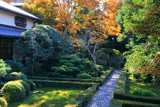 安楽寺 本堂前庭と紅葉