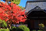 満願寺 紅葉と祖師堂