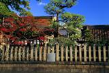 満足稲荷神社 玉垣越しの紅葉