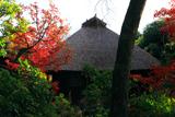 雙林寺 紅葉の花月庵