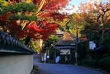 紅葉と芭蕉堂