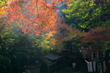 神應寺 紅葉の奥ノ院