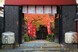 長建寺 山門越しの紅葉と本殿