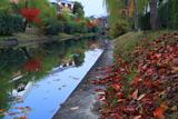 月桂冠大倉記念館 東濠川の水鏡と落葉