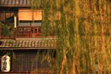 寺田屋 柳黄葉と旅籠
