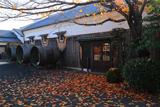 月桂冠大倉記念館 中庭の桜落葉と酒桶