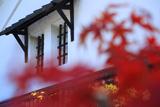 月桂冠大倉記念館 紅葉越しの酒蔵