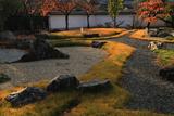 安楽寿院 鳥羽離宮復元庭園の桜紅葉