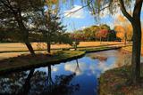 鳥羽離宮跡公園 秋色の池泉