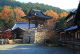 本圀寺 鐘楼と雑木黄葉